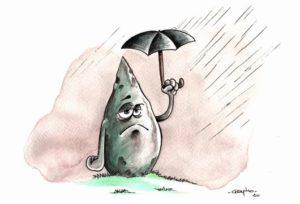 Menhir sous la pluie.